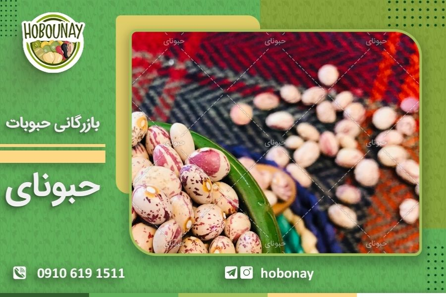 نمایندگی های فروش عمده لوبیا چیتی