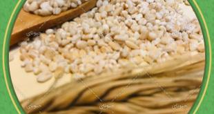 خرید مستقیم انواع حبوبات از بازار حبوبات تهران