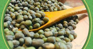 اطلاع از قیمت حبوبات فله ای